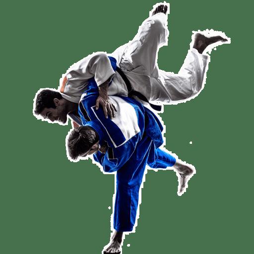 kisspng-brazilian-jiu-jitsu-jujutsu